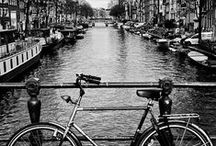 Amsterdam / Getting back to our roots, this board focuses on our humble beginnings in Holland.
