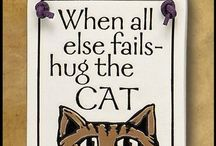 Words About Cats / Exactly what it says.  Words that apply to cats in some way. / by Sandra Belisle