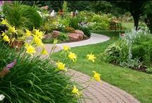 Create a Beautiful Garden / Here you can find everything you need about gardens.