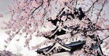 where to go in japan / tokyo, kyoto, osaka, hiroshima, himeji, fukuoka, hokkaido, kanazawa, everything in Japan