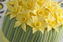 Spring / All things Spring! Daffodils.