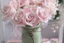 Beautiful Flowers / Shots of stunning pretty flowers