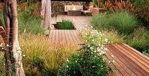 My Future Garden & House