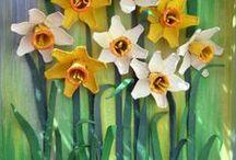 Tavasz / Spring 1 / Tavaszi virágok / Spring flowers / by Jolán Szabó
