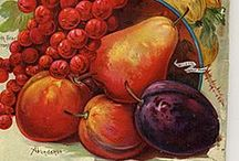 Gyümölcsök / Fruits / by Jolán Szabó