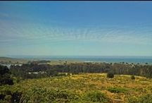 Panoramic Coastal Views | Bodega Bay / This Sonoma Coast private retreat blends stunning ocean, bay and pastoral views with a serene country setting on 2 usable acres. The main residence includes a living room, dining nook, possible granny unit, corrals and a rustic barn with water and electricity. Offering 3 bedrooms and 2.5 baths on a split-level, the floor plan is spacious. Features include a locally quarried fieldstone fireplace, cathedral ceilings, skylights, a bonus room off the garage and a sports court with incredible views.