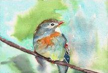 ~I Love Watercolor birds~ / Watercolor birds,bird lovers.