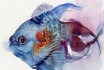 ~I Love Watercolor Fishes~ / Watercolor fishes. Fish lovers.