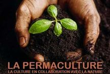PERMACULTURE / by Waki