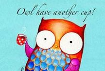 Owls / Owls and what else to say