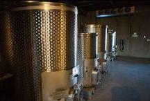 Fasi Estate Winery / Our Beautiful Winery