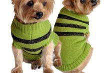 Dog Fashions / Fashionable pooches galore!