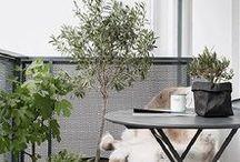 Balkon und Garten I Balcony and Garden