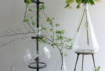 Wohnen mit Grün I Greenrooms