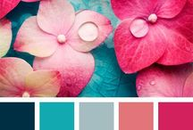 Color pallets