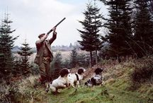 Shotguns & Gun Dogs /  #Upland Bird Hunting  / by Francois Toutssaint