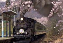 Japanse Treinen / In Japan rijden enkele bijzondere treinen op nog mooiere sporen. Niet voor niks heeft het land een grote groep die-hard fans van treinen! Speciaal voor hen (en jullie) dit bord met alleen maar Japanse treinen.