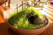 HOLIDAYS:{{ Easter }} / My favorite holiday, because my Lord lives again. He was born of a virgin in a humble stall, lived on this earth and was crucified BUT, early Easter morning, his eyes opened and he walked out of the grave. Thank you Lord. / by Kathy Coley