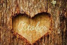 Fall / by Sprecasanti Rebecca