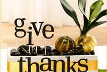 Thanksgiving <3 / Aah, Thanksgiving! The best holiday of the year :-) Please post all your Thanksgiving recipes and table decor for us to all get fresh new ideas - before we know it, Thanksgiving 2014 will be here!