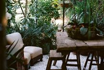 Potting Shed  / a space in the garden for relaxing amongst the flowers  / by Nikki Robilliard