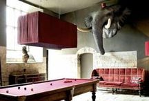 THE ELEPHANT IN THE ROOM! / MOOD/INSPIRATIONAL IMAGES