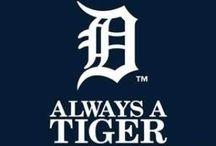 Always A Tiger ⚾️❤️ / Detroit Tigers Baseball ❤️⚾️
