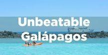 Unbeatable Galapagos