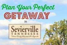 Discover Fun in Sevierville, Tennessee / This is a sponsored board created by me on behalf of Sevierville. #Sevierville  / by Jeannette from J-Man and MillerBug