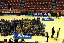 Excursió a la Fonteta 11/1/2014 / L'11 de gener, l'EB l'Olleria va omplir tres autobusos per anar a veure el partit de lliga entre el València Basket i l'Iberostar Tenerife. Els xiquets i les xiquetes, emocionats d'estar a la Fonteta i compartir-ho amb els companys; els pares i les mares, contents de participar en aquestes iniciatives; els entrenadors, satisfets de la feina... i tothom, encantat d'haver assistit!