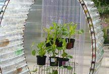 Tiny Veggie Gardens