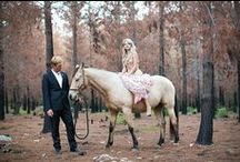 Wedding ideas we'd love to see / Photo's we've seen of great ideas around the internet