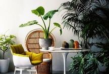 Home Decor / This home interior board is inspired by our friend Dana Claudet. She is a genius feng shui master. We love you Dana!