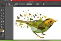 Graphic design / Graphic design and prints