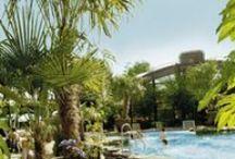 Aqua Mundo / De Aqua Mundo is een onvergetelijke belevenis. In deze tropische oase zorgt de langste glijbaan van Center Parcs voor 103 meter waterpret. Lekker zwemmen tussen de golven of van de kolkende wildwaterbaan…...
