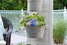 Container gardening / by lou nelson