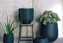 Outdoor Styling Ideas