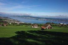 Der Zürichsee / Der See der Zürich erst das macht was es ist.