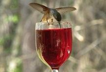 """It´s Wine O´Clock / Welcome to """"IT`S WINE O`CLOCK"""" board & thanks for pinning your very best. If you would like to join this board please message me """"ADD ME""""  on one of my pins and I invite you. Happy pinning!!"""