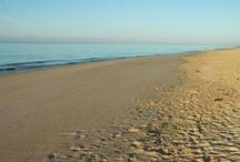 Tourism  TAVIRA and Algarve