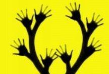 Thrillers & Polars / Polars, thrillers, romans noirs chroniqués sur le blog