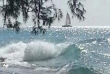 Взгляните-ка на море, разве это не живое существо? Порою гневное, порою нежное! / Море — это море, накатило — откатило. Иногда море штормит. Оно просто есть, и этого достаточно, чтобы вызывать в людях множество самых разных чувств, и я хочу жить просто как «человек у моря». Море не подвластно деспотам. На поверхности морей они могут еще чинить беззакония, вести войны, убивать себе подобных. Но на глубине тридцати футов под водою они бессильны, тут их могущество кончается!