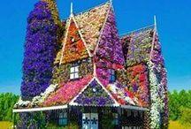 Дом цветущий мир / Дача - это место, где саженец становится деревом, семечко - овощем, а скромнаяобитель волшебным дворцом