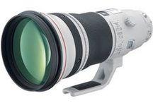 Lens: Canon EF 400mm f/2.8L IS II USM