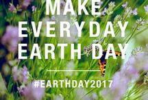 EcoFriendly / Sustainable Everyday Life / Wouldn't it be ideal to live a healthy, chemical free, environmentally friendly lifestyle that can reduce our carbon foot print?   Clean, Green, Compost, Solar, Chemical-free, Healthy, Environment, Indoor, Outdoor, Plants, Purifying