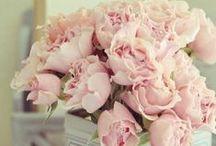♡ Wedding Pizzo Romantico / wedding ispiration _ per la Sposina