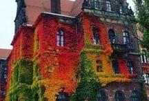 ● season: autumn.
