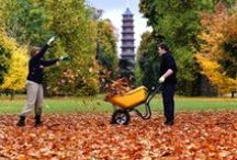 Autumn Adventures / #autumnadventures