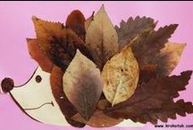 Autumn | Craft Ideas / Autumn brings such a great selection of craft activities. From leave collages to making conker pictures there is plenty to choose from!