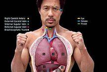 Anatomy / Everything about medicine, psychology, anatomy, science, etc...